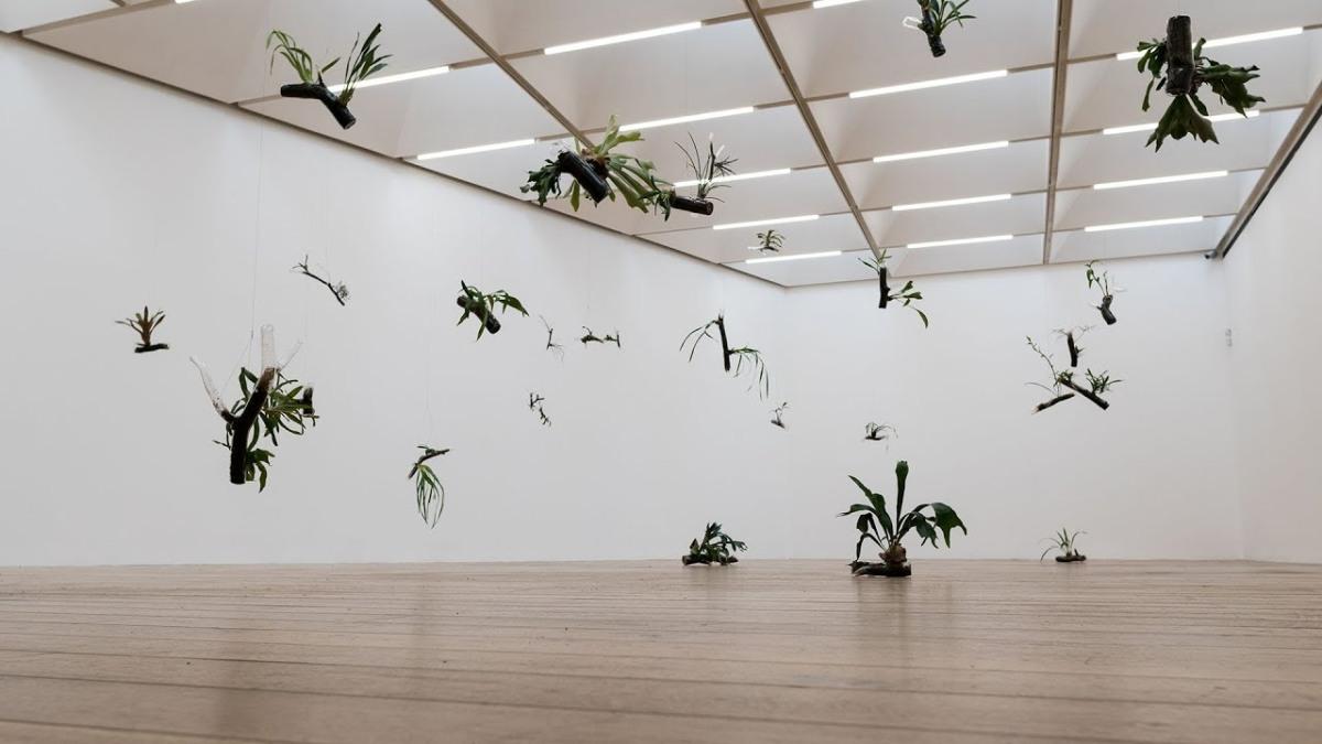 Nottingham Contemporary – Daniel SteegmannMangrané
