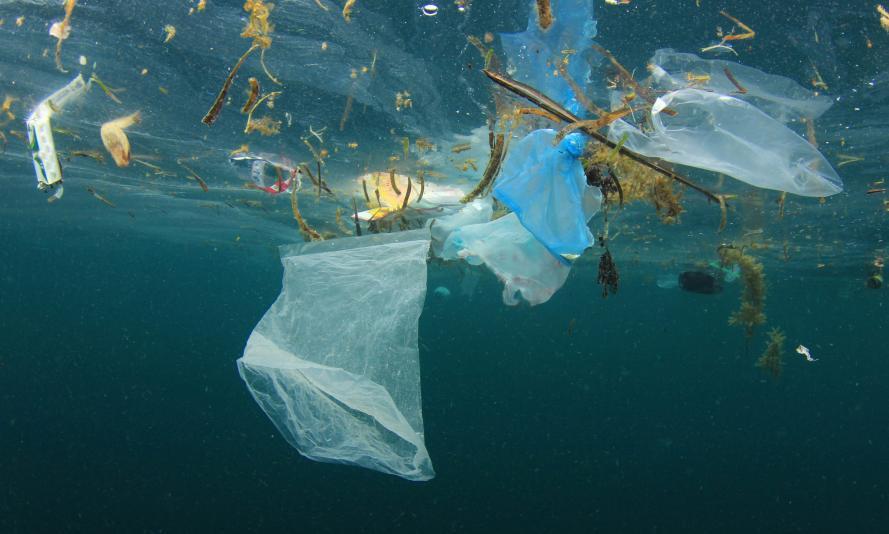 We Live on a PlasticPlanet